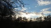 9th Dec 2012 - Winter skyline