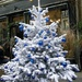 Decorating the Christmas tree by parisouailleurs