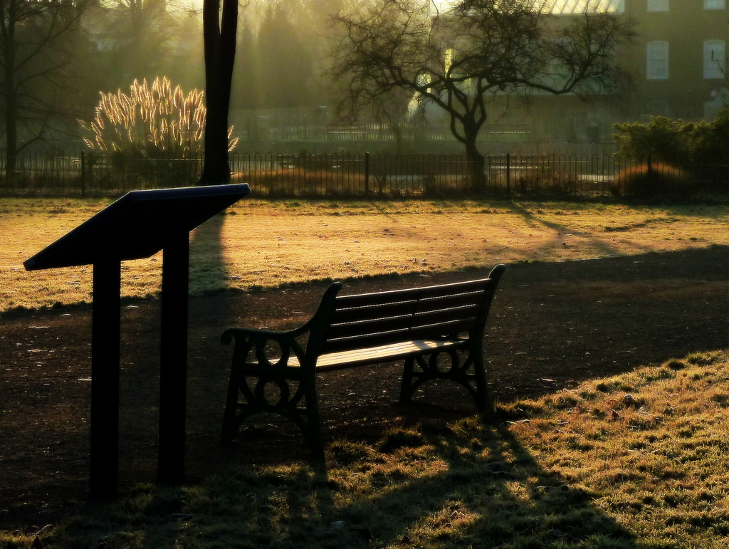 Bench by boxplayer