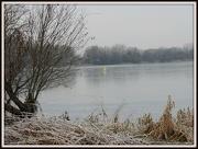 13th Dec 2012 - Frosty lake