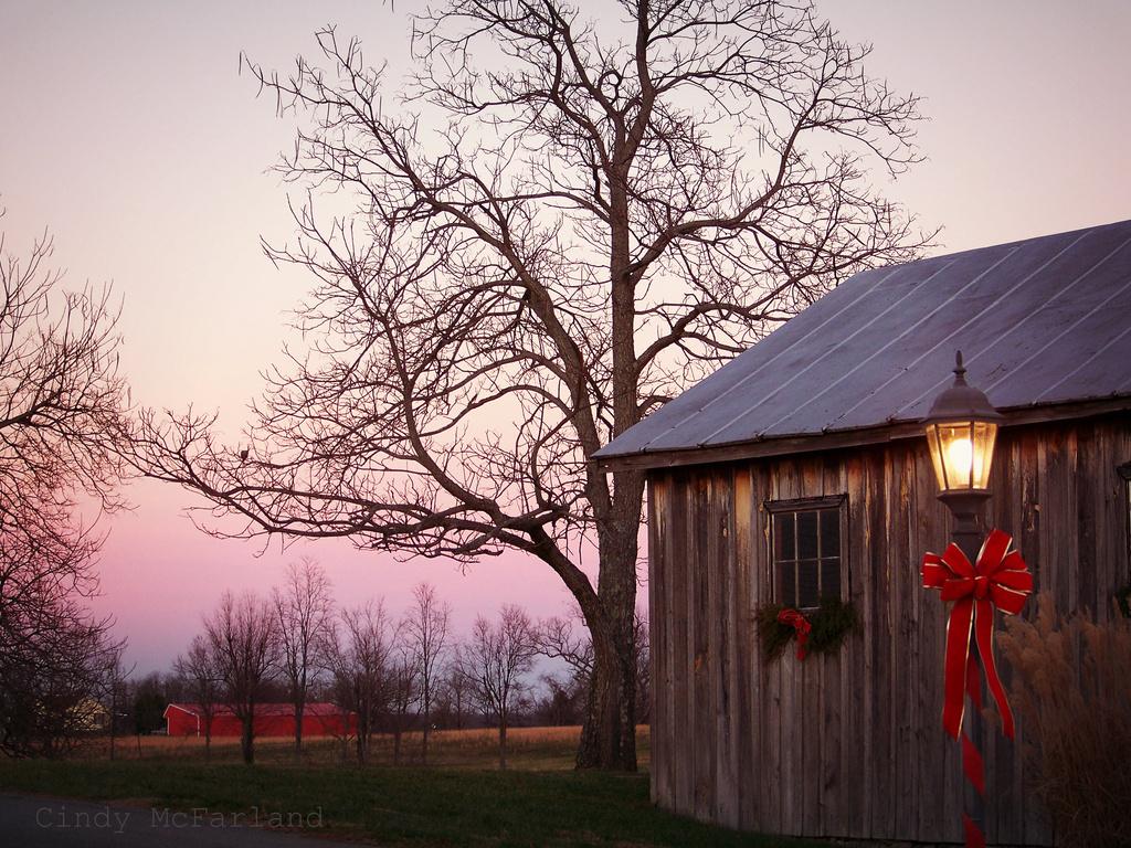 Rustic Christmas by cindymc