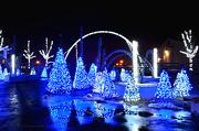 13th Dec 2012 - Blue Christmas Lights