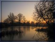 14th Dec 2012 - Icy pond at sunrise