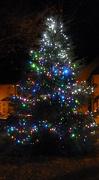 15th Dec 2012 - The Village Christmas Tree