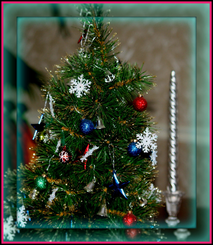 Tiny Tree by vernabeth