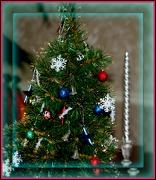 3rd Dec 2012 - Tiny Tree