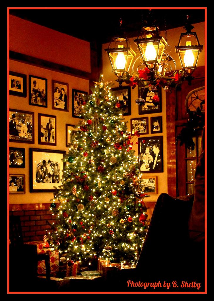 Christmas Tree by vernabeth