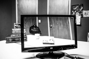 "20th Dec 2012 - Transparent Monitor - For a Transparent ""Me"" shot - GET PUSHED CHALLENGE"