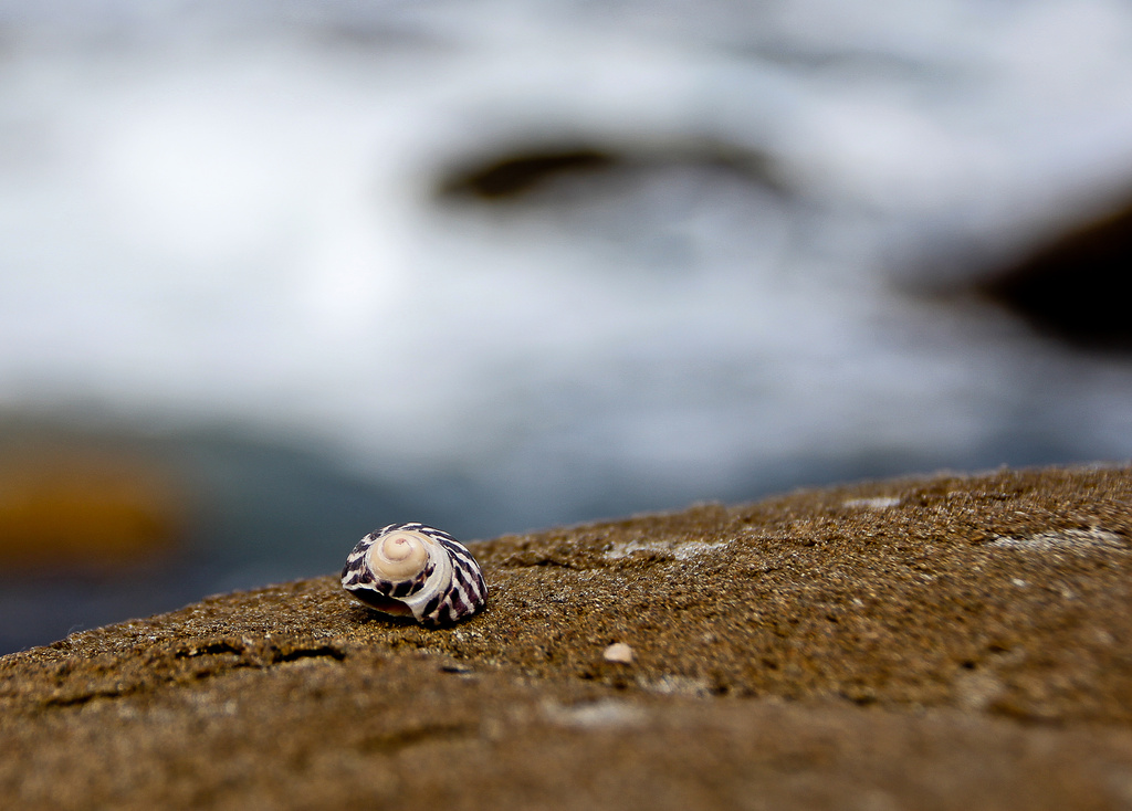 On the rocks by abhijit
