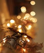 22nd Dec 2012 - banister bokeh