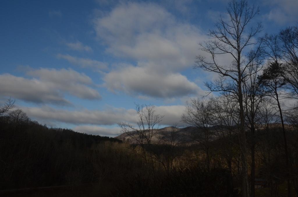 Blue Sky by kathyladley