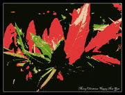 24th Dec 2012 - Merry Christmas and  Happy New Year