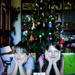 Merry Christmas 365 by corymbia