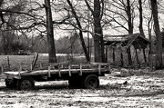 29th Dec 2012 - Hayrides of the Past