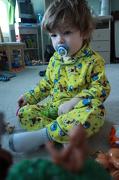 26th Dec 2012 - One Little Monkey