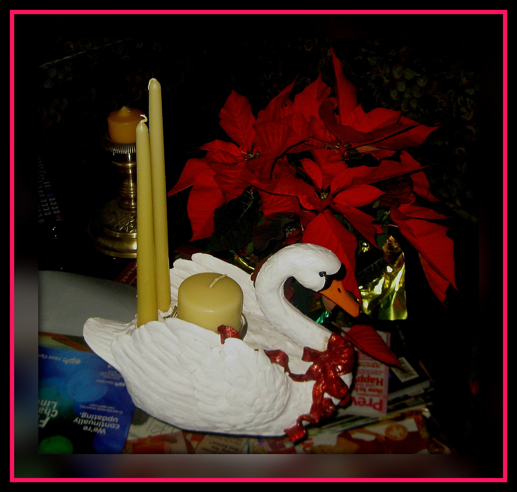 The Christmas Swan by vernabeth