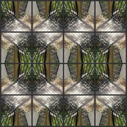 31st Aug 2013 - A play with pattern and corners