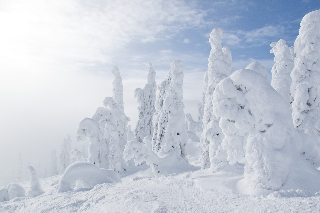 Sunshine and snowghosts by kiwichick