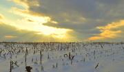 6th Jan 2013 - Winter Sunset