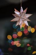 5th Jan 2013 - Christmas Star