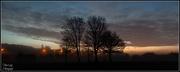 5th Jan 2013 - Misty Early Morning Walk