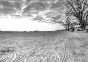3rd Jan 2013 - Snowmobile Trail