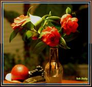 16th Dec 2012 - Fresh Flowers