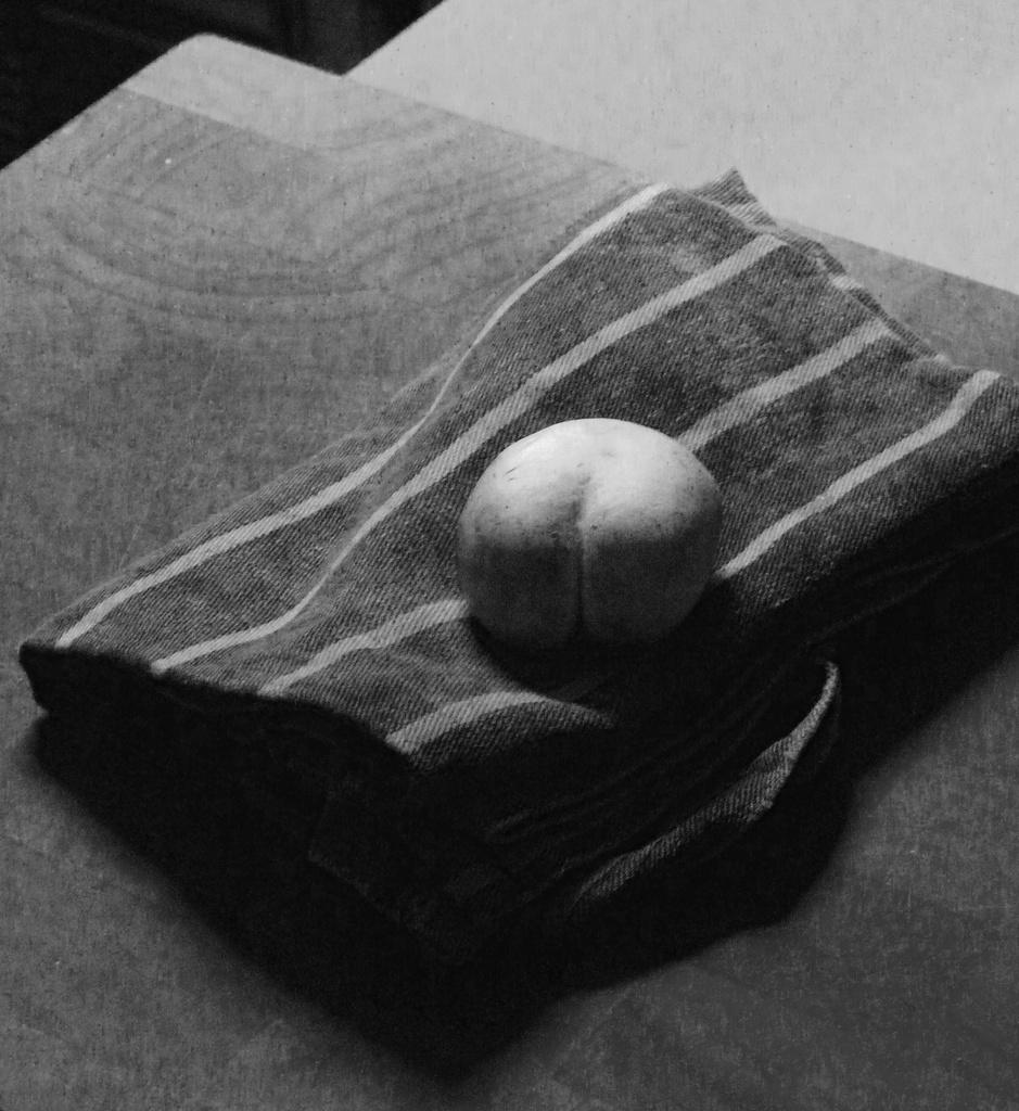 Mushroom bum by sabresun