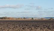 10th Jan 2013 - Countryside