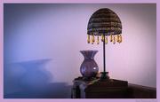 11th Jan 2013 - Jasmine's Lamp