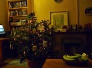 24th Dec 2012 - Christmas tree