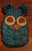 14th Jan 2013 - Woolly owl
