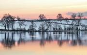 15th Jan 2013 - evening at Boddington reservoir