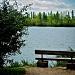 Bench by dora