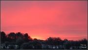 17th Jan 2013 - Winters Sky