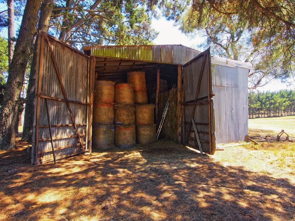 Inside the barn by peterdegraaff