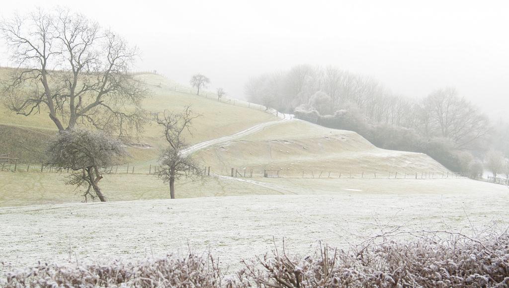 Misty, frosty, and a sprinkling of snow by dulciknit