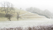 17th Jan 2013 - Misty, frosty, and a sprinkling of snow