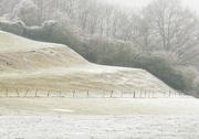 18th Jan 2013 - Stepped field