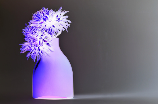 Vase with flowers by seanoneill