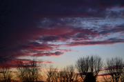 17th Jan 2013 - Sunset SOOC