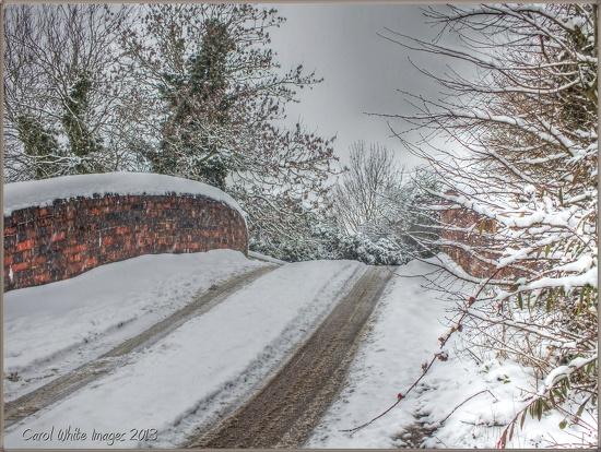 The Bridge by carolmw