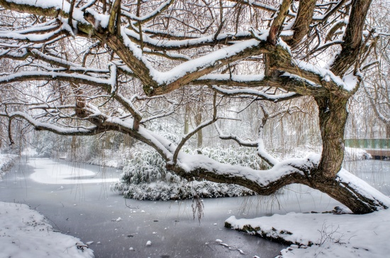 Frozen moat by boxplayer