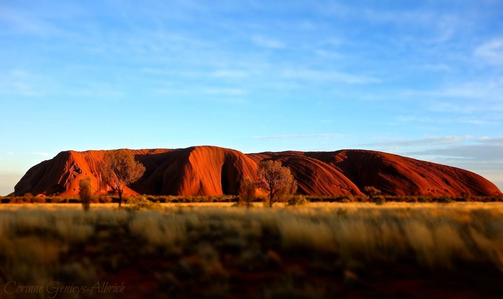 sunrise on Uluru by cocobella
