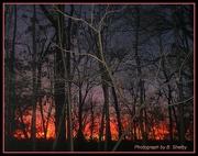 31st Dec 2012 - January Sunset