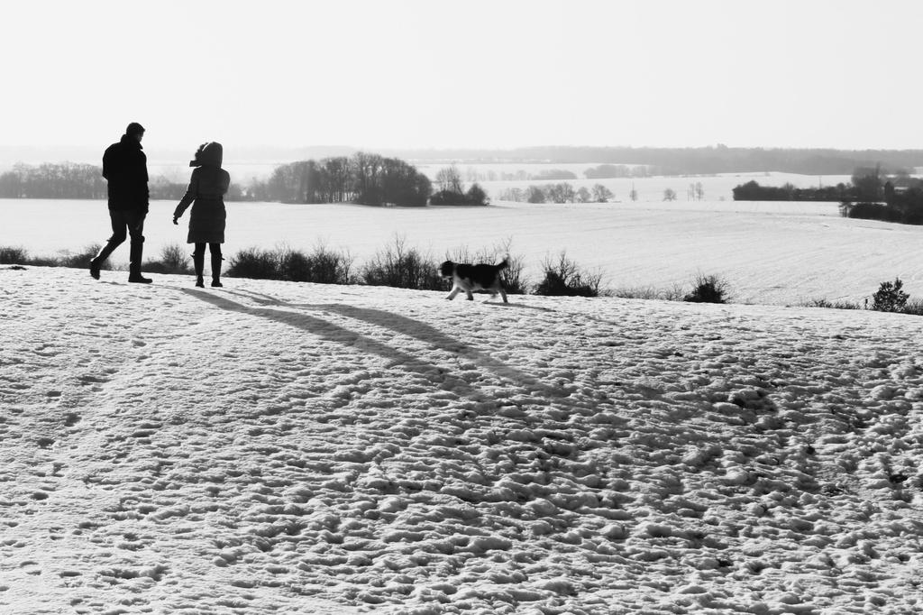 Snow on the horizon by judithg