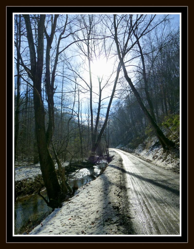 Muddy Backroad by calm