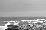 28th Jan 2013 - Waves at Kiama