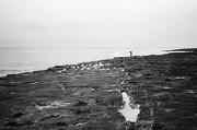 29th Jan 2013 - Keen fisherman