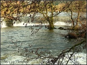 29th Jan 2013 - Flood